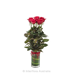 ADORE Arrangement of 6 red red roses in a vase AUS 784