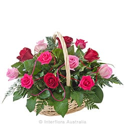 CARESS Basket of 12 red and pink roses AUS 794