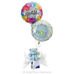 CHARLIE Teddy bear with helium balloons AUS 743