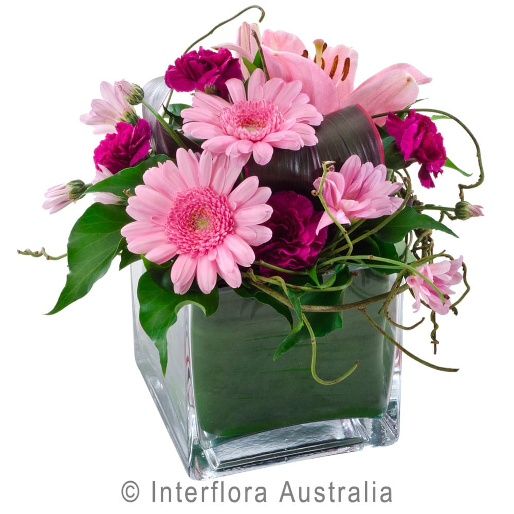 CUBE OF PINK TONES MIXED FLOWERS IN LOW GLASS CUBE AUS293