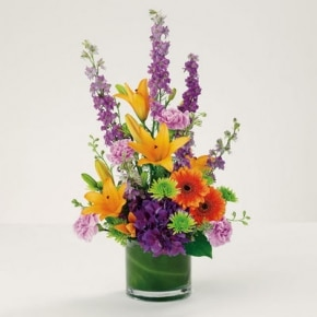 DF 2 VASE OF STUNNING BRIGHT FLOWERS