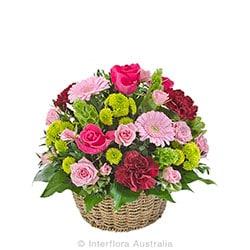 FLOURISH Bright mixed basket of blooms AUS 718