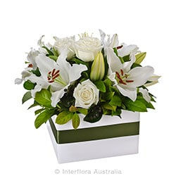 HARMONY Elegant large box arrangment AUS 711