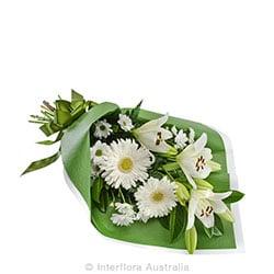 INNOCENCE Sympathy bouquet suitable for home or service AUS 833
