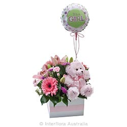 ITS A GIRL Flower box with a teddy bear and balloon AUS 747