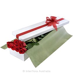 LOVE STORY Presentation box of 6 long stemmed red roses AUS 789