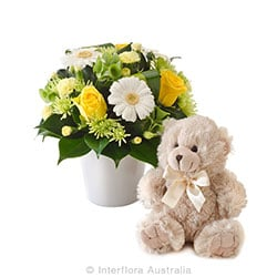 MORGAN Mixed arrangemet with a teddy bear AUS 752