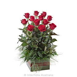NOW AND FOREVER Box arrangement of 12 long stem roses AUS 770 (red) AUS 771 (pink) AUS 772 (yellow)