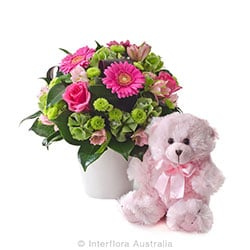 OLIVIA Mixed arrangement with a teddy bear AUS 750