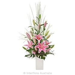 PANACHE Elegant arrangement of Oriental Lilies AUS 700