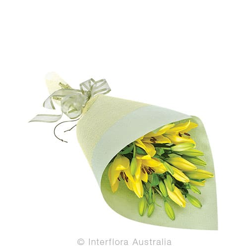 PIPER Wrapped lilies CODE SA241