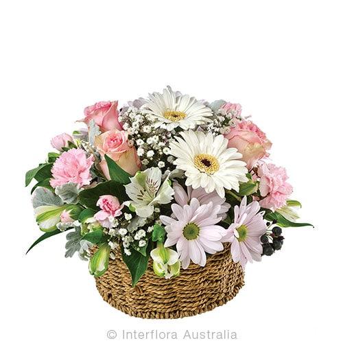 PRUDENCE Basket of mixed pastel blooms CODE SA253