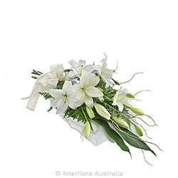 PURITY Lily wrap suitable for home or service AUS 831
