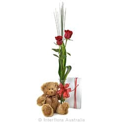 SWEET THING Two red roses in bud vase chocolate and teddy bear AUS 7789