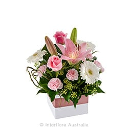 SWEETLY Pretty mini box arrangement AUS 739