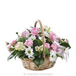 TENDERNESS Pretty basket of pastel blooms AUS 740
