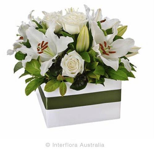 All Deborahs Flowers